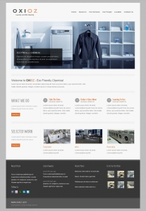 Design Web Laundry Alt 1
