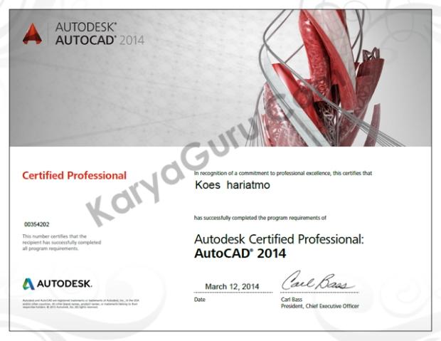 AutoCAD 2014 Certified Professional koeshariatmo
