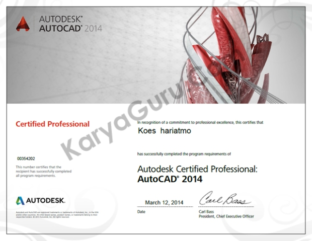 AutoCAD 2014 Certified Professional